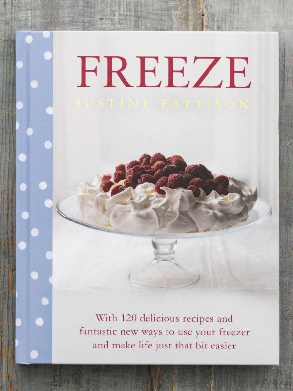 freeze book cover